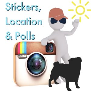 vector image of user with polls, locations & stickers