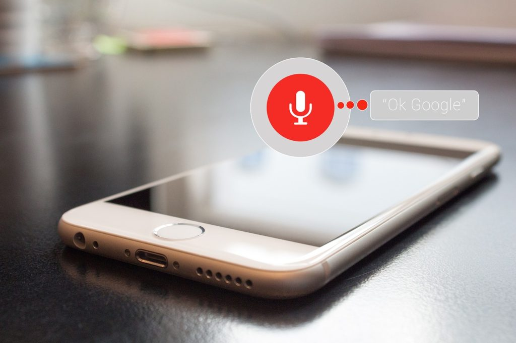 Google PPC Voice Search